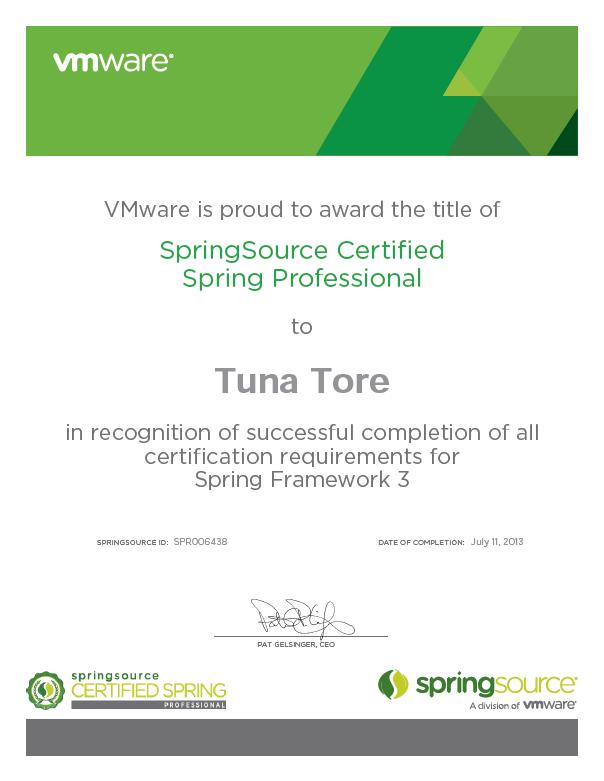Spring Core 3.0 Framework Certification (certification result ...